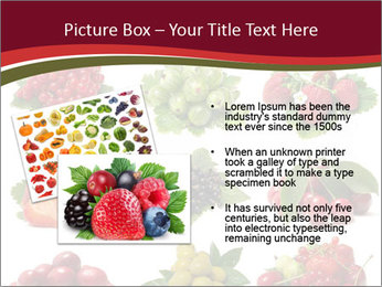 Catalogue of Berries PowerPoint Templates - Slide 20