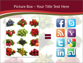 Catalogue of Berries PowerPoint Templates - Slide 21