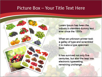 Catalogue of Berries PowerPoint Templates - Slide 23
