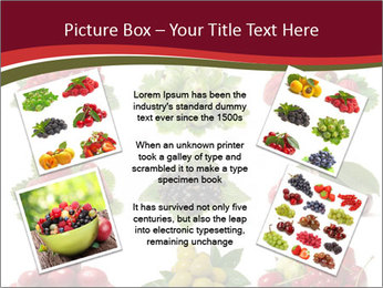 Catalogue of Berries PowerPoint Templates - Slide 24