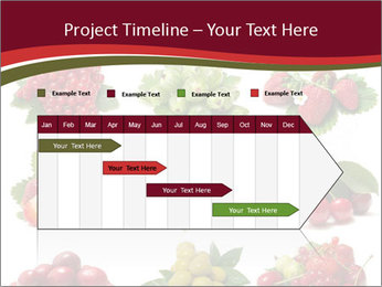 Catalogue of Berries PowerPoint Templates - Slide 25