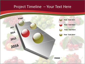 Catalogue of Berries PowerPoint Templates - Slide 26