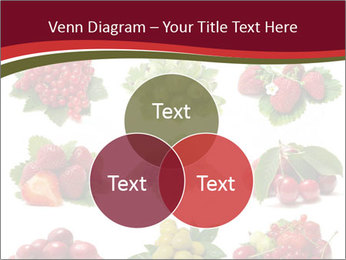 Catalogue of Berries PowerPoint Templates - Slide 33