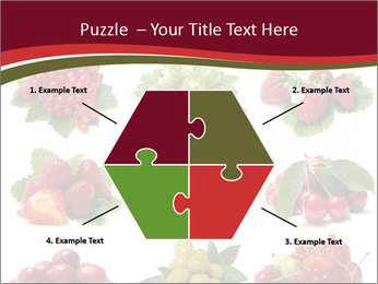 Catalogue of Berries PowerPoint Templates - Slide 40
