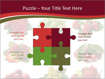 Catalogue of Berries PowerPoint Templates - Slide 43