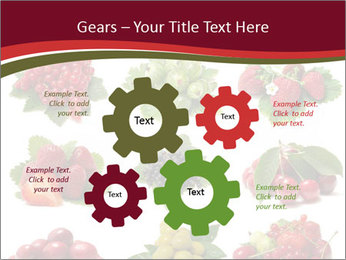 Catalogue of Berries PowerPoint Templates - Slide 47