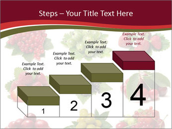 Catalogue of Berries PowerPoint Templates - Slide 64