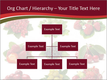 Catalogue of Berries PowerPoint Templates - Slide 66