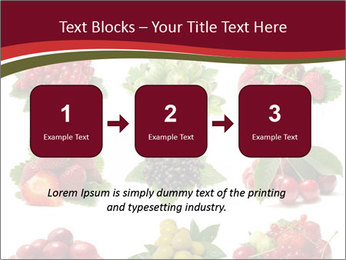 Catalogue of Berries PowerPoint Templates - Slide 71