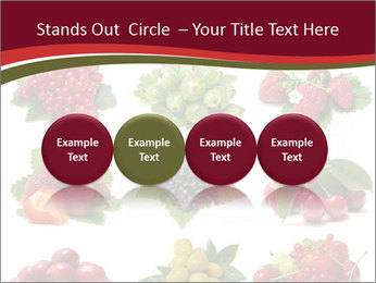 Catalogue of Berries PowerPoint Templates - Slide 76