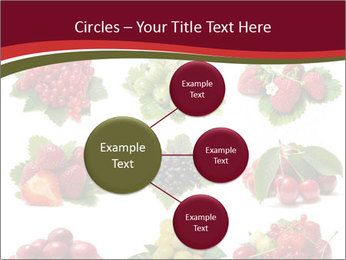 Catalogue of Berries PowerPoint Templates - Slide 79