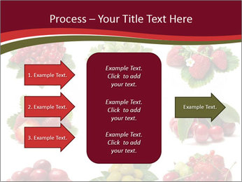 Catalogue of Berries PowerPoint Templates - Slide 85