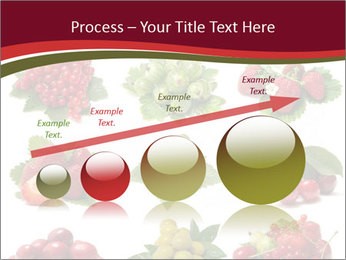 Catalogue of Berries PowerPoint Templates - Slide 87