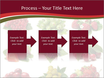 Catalogue of Berries PowerPoint Templates - Slide 88