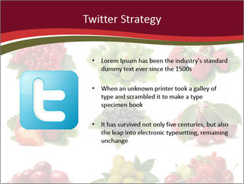Catalogue of Berries PowerPoint Templates - Slide 9