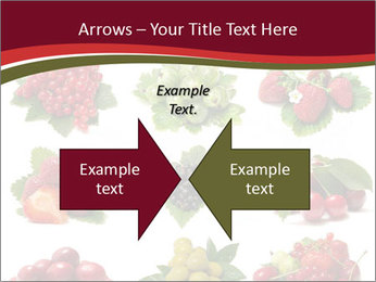 Catalogue of Berries PowerPoint Templates - Slide 90