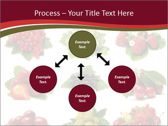 Catalogue of Berries PowerPoint Templates - Slide 91