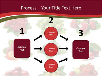 Catalogue of Berries PowerPoint Templates - Slide 92