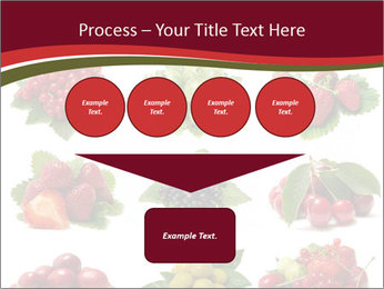 Catalogue of Berries PowerPoint Templates - Slide 93