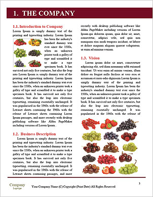 0000063773 Word Template - Page 3