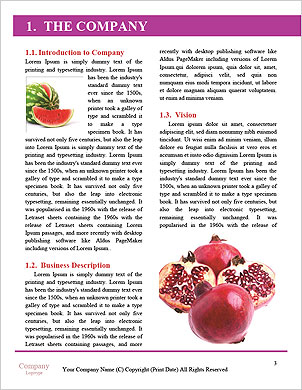 0000063774 Word Template - Page 3