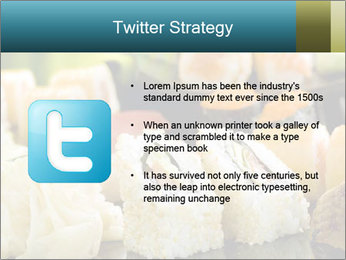 Tuna Roll PowerPoint Template - Slide 9