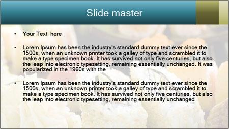Tuna Roll PowerPoint Template - Slide 2