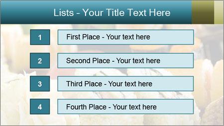 Tuna Roll PowerPoint Template - Slide 3