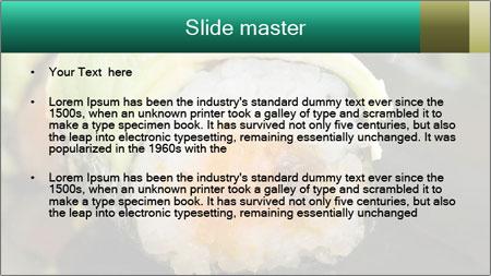Nigiri Roll PowerPoint Template - Slide 2