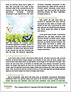 0000063798 Word Templates - Page 4