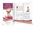 0000063815 Brochure Templates