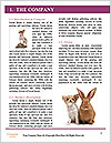 0000063815 Word Template - Page 3
