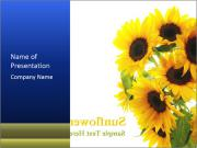Bunch of Sunflowers PowerPoint Templates