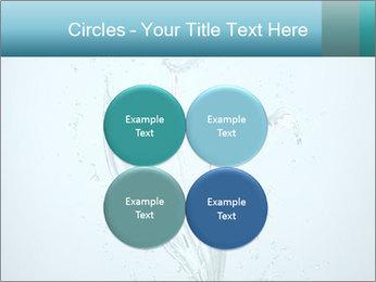 Water Tulip PowerPoint Template - Slide 38