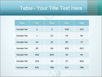 Water Tulip PowerPoint Templates - Slide 55