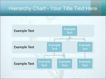 Water Tulip PowerPoint Template - Slide 67