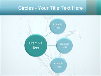 Water Tulip PowerPoint Template - Slide 79