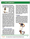 0000063848 Word Template - Page 3