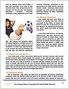 0000063849 Word Templates - Page 4