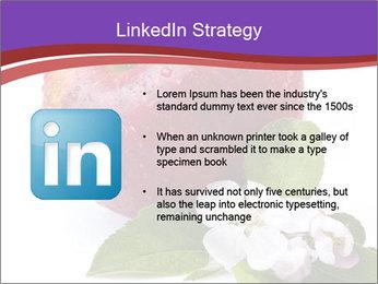 Apple Blossom PowerPoint Templates - Slide 12