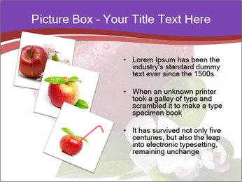 Apple Blossom PowerPoint Templates - Slide 17