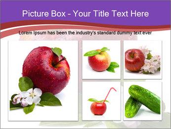 Apple Blossom PowerPoint Templates - Slide 19
