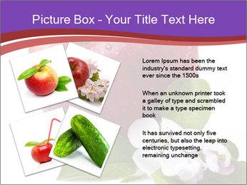 Apple Blossom PowerPoint Templates - Slide 23