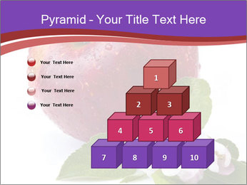 Apple Blossom PowerPoint Templates - Slide 31