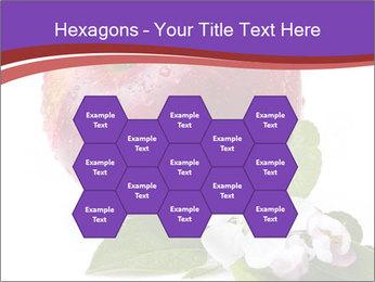 Apple Blossom PowerPoint Templates - Slide 44