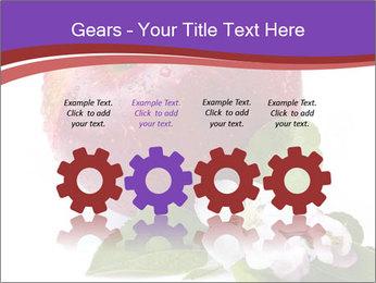 Apple Blossom PowerPoint Templates - Slide 48