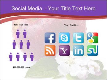 Apple Blossom PowerPoint Templates - Slide 5