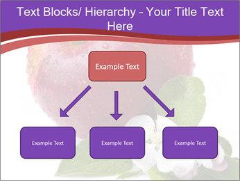 Apple Blossom PowerPoint Templates - Slide 69