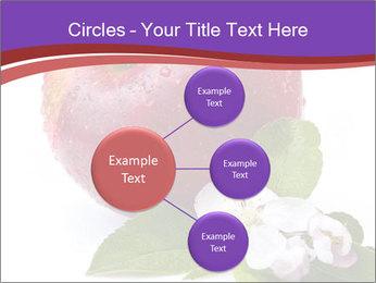 Apple Blossom PowerPoint Templates - Slide 79
