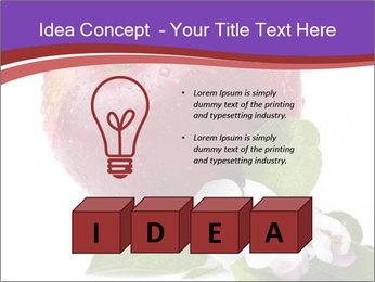 Apple Blossom PowerPoint Templates - Slide 80